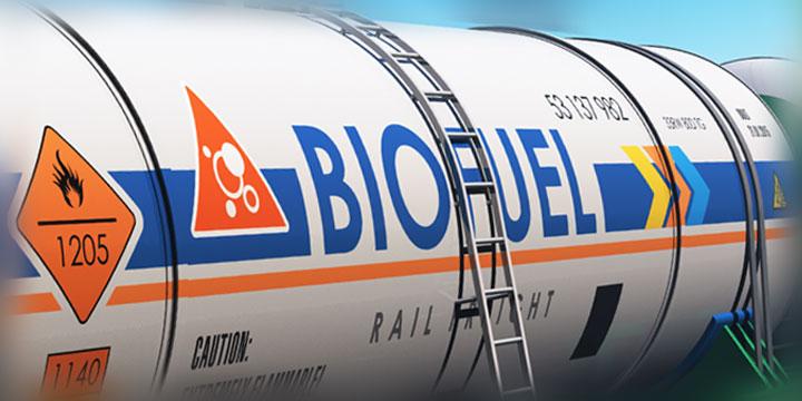 Invest in BioDiesel